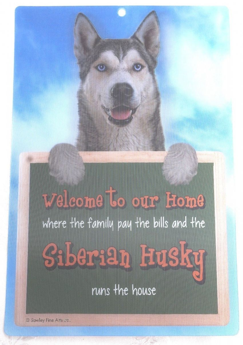 SIBERIAN HUSKY 3D WELCOME SIGN STUNNING EYE CATCHING 23CM X 15CM DOG SIGN